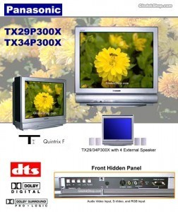 tv-panasonic_tx29-34p300x